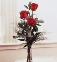 Adıyaman internetten çiçek satışı  Vazoda 3 adet güzel gül