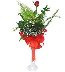 Adıyaman anneler günü çiçek yolla  Cam vazoda masum tek gül