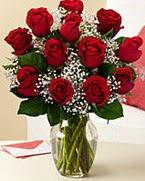 Sevgilime hediye 9 adet 1.ci kalite gül  Adıyaman anneler günü çiçek yolla