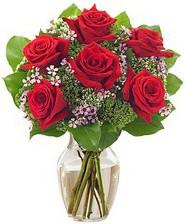 Kız arkadaşıma hediye 6 kırmızı gül  Adıyaman internetten çiçek siparişi