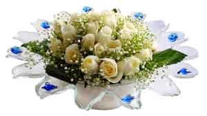 Adıyaman çiçek online çiçek siparişi  11 adet Beyaz güller özel cam tanzim