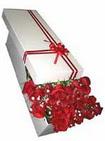 Adıyaman çiçekçi telefonları  11 adet 1.kalite magnum güller