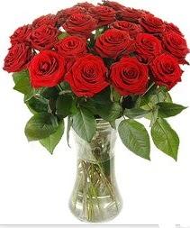 Adıyaman çiçek mağazası , çiçekçi adresleri  Vazoda 15 adet kırmızı gül tanzimi