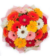 15 adet renkli gerbera buketi  Adıyaman yurtiçi ve yurtdışı çiçek siparişi