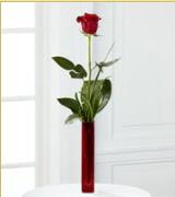 Vazo içerisinde 1 adet kırmızı gül  Adıyaman internetten çiçek siparişi