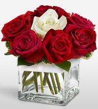 Tek aşkımsın çiçeği 8 kırmızı 1 beyaz gül  Adıyaman uluslararası çiçek gönderme