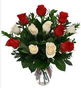 Vazo içerisinde 6 kırmızı 6 beyaz gül  Adıyaman hediye çiçek yolla