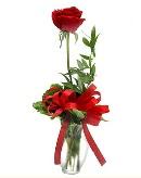 vazo içerisinde 1 adet kırmızı gül  Adıyaman çiçekçi telefonları