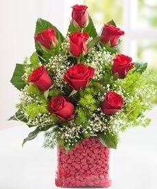 Cam içerisinde 9 adet kırmızı gül  Adıyaman internetten çiçek satışı