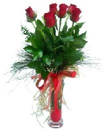 vazo içerisinde 5 kırmızı gül  Adıyaman güvenli kaliteli hızlı çiçek