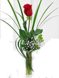 Cam içerisinde 1 kırmızı gül  Adıyaman çiçek gönderme sitemiz güvenlidir
