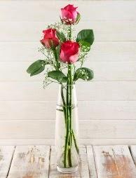 Cam içerisinde 3 kırmızı gül  Adıyaman çiçek satışı
