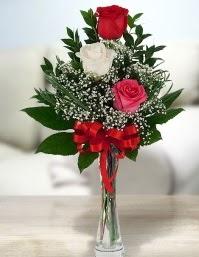 Camda 2 kırmızı 1 beyaz gül  Adıyaman ucuz çiçek gönder