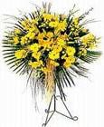 Adıyaman yurtiçi ve yurtdışı çiçek siparişi  Sari kazablanka Ferforje