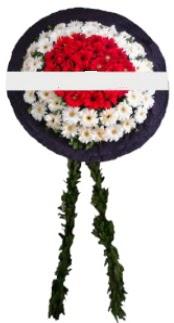 mozele çiçeği  Adıyaman hediye sevgilime hediye çiçek