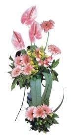 Adıyaman güvenli kaliteli hızlı çiçek  Pembe Antoryum Harikalar Rüyasi