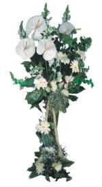 Adıyaman çiçek mağazası , çiçekçi adresleri  antoryumlarin büyüsü özel