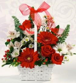 Karışık rengarenk mevsim çiçek sepeti  Adıyaman internetten çiçek siparişi