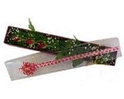 Adıyaman hediye çiçek yolla  3 adet gül.kutu yaldizlidir.