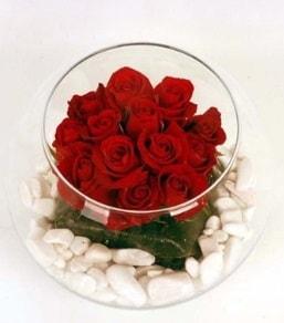 Cam fanusta 11 adet kırmızı gül  Adıyaman çiçek gönderme