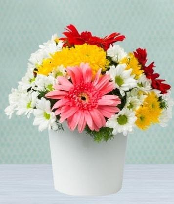 Seramik Vazoda Gelbera ve Papatya  Adıyaman çiçek gönderme