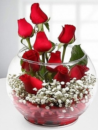 Kırmızı Mutluluk fanusta 9 kırmızı gül  Adıyaman çiçek siparişi sitesi