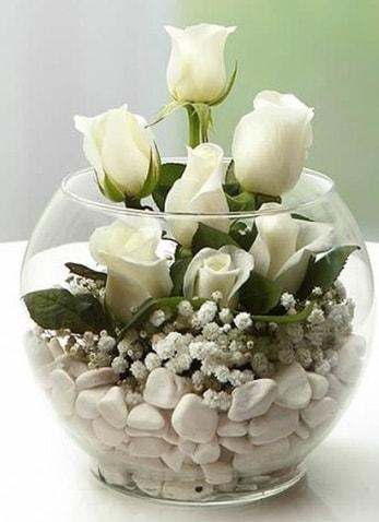 Beyaz Mutluluk 9 beyaz gül fanusta  Adıyaman çiçek siparişi sitesi