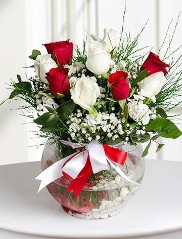 Aşk Küresi  5 beyaz 5 kırmızı gül fanusta  Adıyaman internetten çiçek satışı