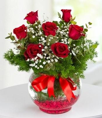 fanus Vazoda 7 Gül  Adıyaman çiçek , çiçekçi , çiçekçilik