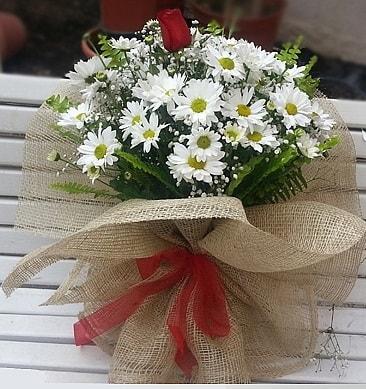 Papatya 1 adet kırmızı gül buketi  Adıyaman çiçekçiler