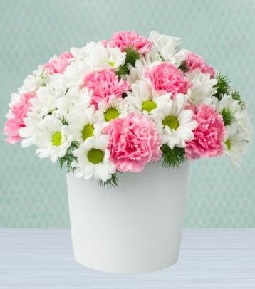 Seramik vazoda papatya ve kır çiçekleri  Adıyaman çiçek siparişi sitesi