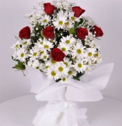 7 adet kırmızı gül ve papatyalar krizantem  Adıyaman internetten çiçek satışı