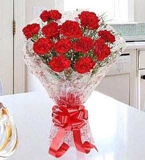 12 adet kırmızı karanfil buketi  Adıyaman İnternetten çiçek siparişi