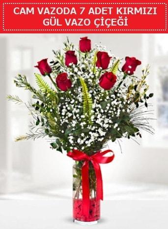 Cam vazoda 7 adet kırmızı gül çiçeği  Adıyaman çiçek gönderme sitemiz güvenlidir