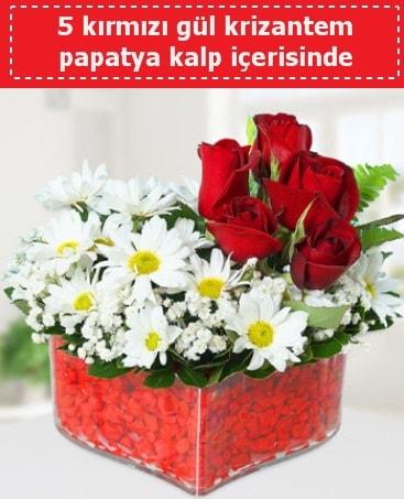 mika kalp içerisinde 5 kırmızı gül papatya  Adıyaman çiçek gönderme