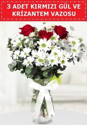 3 kırmızı gül ve camda krizantem çiçekleri  Adıyaman çiçek gönderme