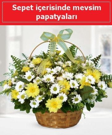 Sepet içerisinde mevsim papatyaları  Adıyaman ucuz çiçek gönder