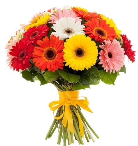 Gerbera demeti buketi  Adıyaman çiçek satışı