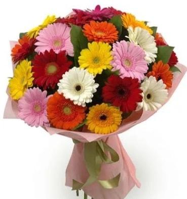 Karışık büyük boy gerbera çiçek buketi  Adıyaman çiçek satışı
