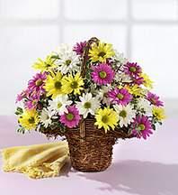 Adıyaman çiçekçiler  Mevsim çiçekleri sepeti